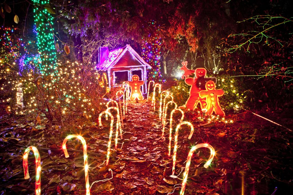 Christmas Lights At Gingerbread House Christmas Eve